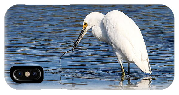 IPhone Case featuring the photograph Egret Eating Eel 4 by William Selander