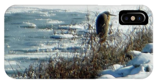 Egret Frozen Lake IPhone Case