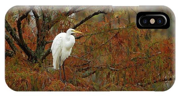 Egret In Autumn IPhone Case