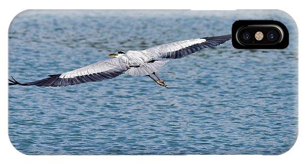 Great Blue Heron In Flight IPhone Case