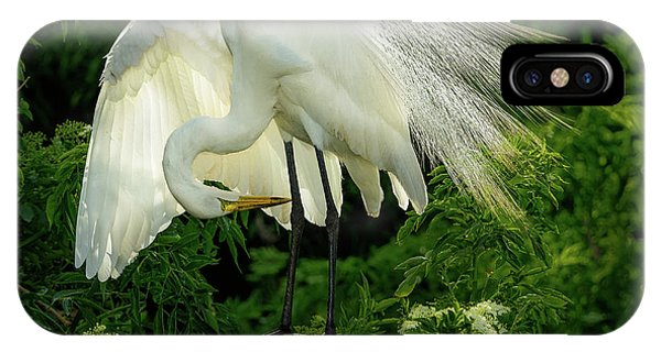 Egret Preening IPhone Case