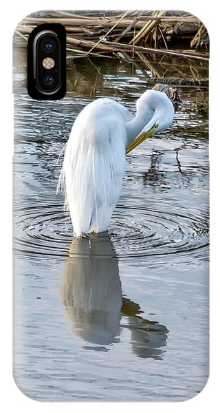 Egret Standing In A Stream Preening IPhone Case