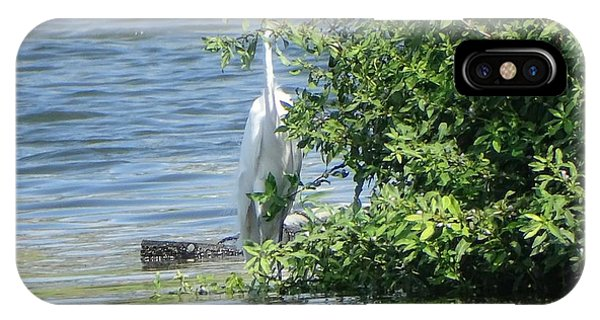 Great Egret In The Marsh IPhone Case