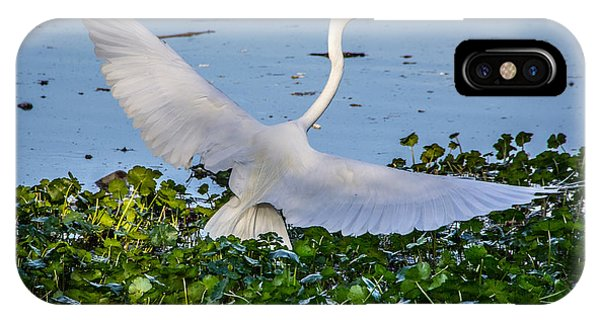 Egret With Wings Spread IPhone Case