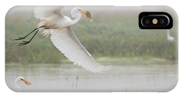 Egrets Fish IPhone Case