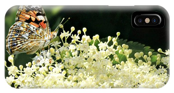 Elderflower And Butterfly IPhone Case