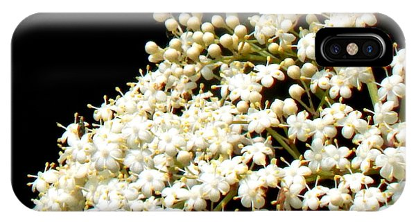 Elderflower Tree IPhone Case