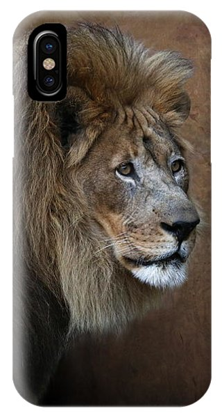 IPhone Case featuring the photograph Elderly Gentleman Lion by Debi Dalio