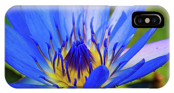 Electric Lily IPhone Case