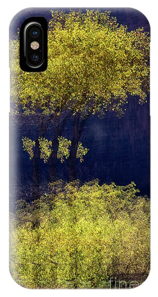 Elegance In The Park Horizontal Adventure Photography By Kaylyn Franks IPhone Case