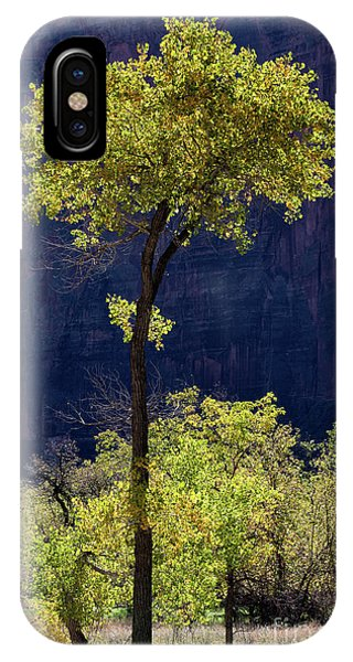 Elegance In The Park Utah Adventure Landscape Photography By Kaylyn Franks IPhone Case