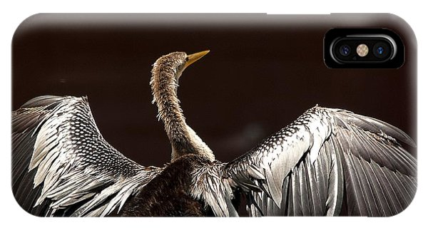 Elegant Anhinga IPhone Case
