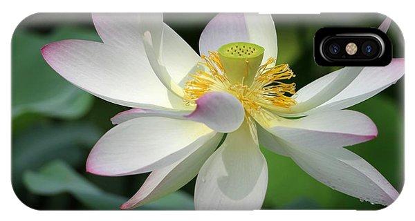 Elegant Lotus IPhone Case