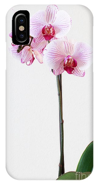 Elegant Orchid IPhone Case