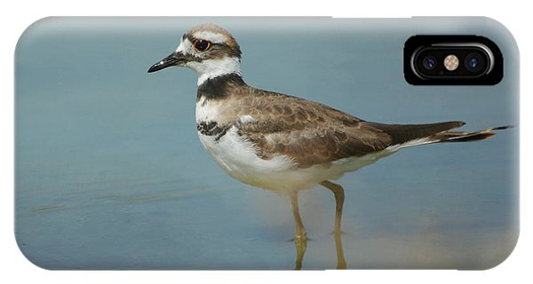 Killdeer iPhone Case - Elegant Wader by Fraida Gutovich