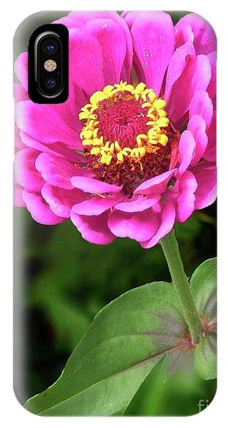 Elegant Zinnia Soft Glow IPhone Case