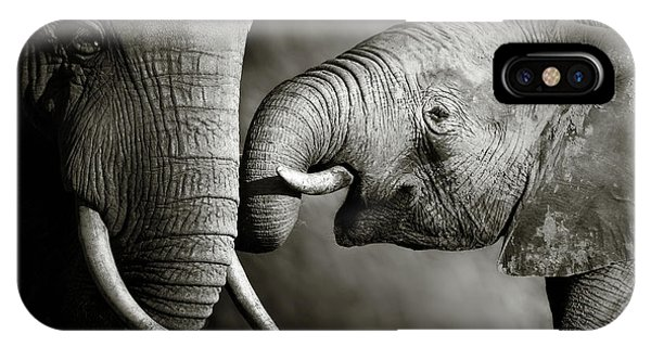 iPhone Case - Elephant Affection by Johan Swanepoel