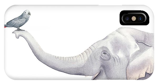 Elephant And Bird Watercolor IPhone Case