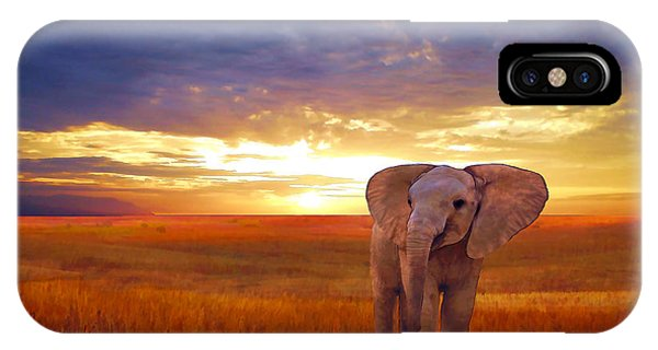 Elephant Baby IPhone Case