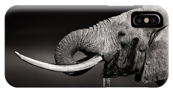 Bull iPhone Case - Elephant Bull Drinking Water - Duetone by Johan Swanepoel
