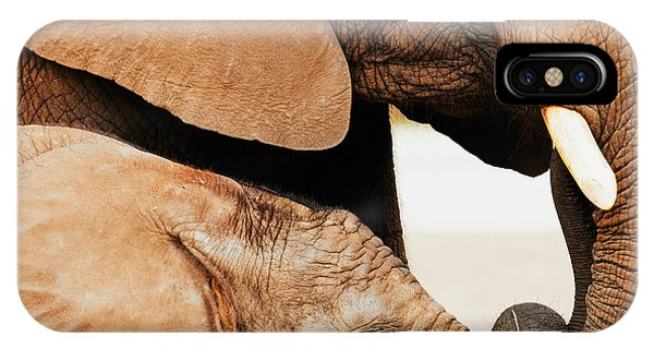 Elephant Calf And Mother Close Together IPhone Case