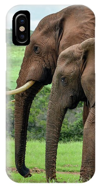Elephant Couple Profile IPhone Case