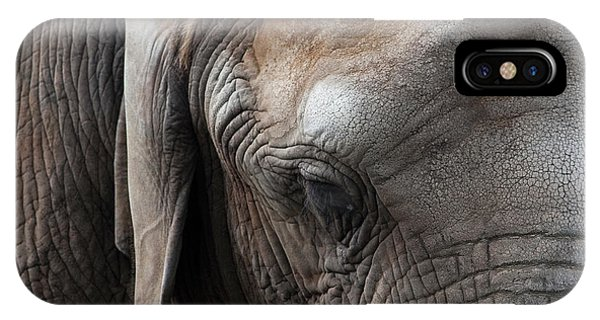 Elephant Eye IPhone Case