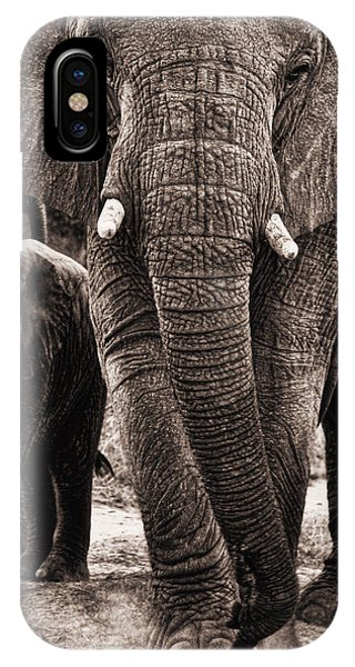 Elephant Family Time IPhone Case