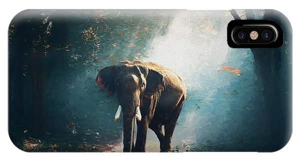 Elephant In The Mist - Painting IPhone Case