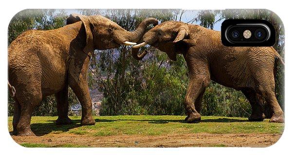 Elephant Play 3 IPhone Case