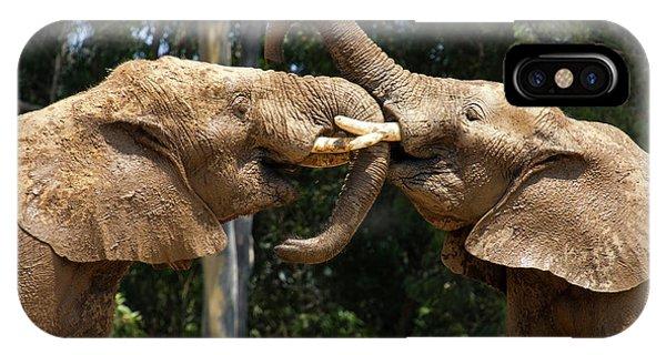 Elephant Play IPhone Case