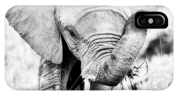 Elephant Portrait In Black And White IPhone Case