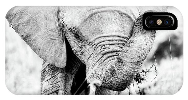 iPhone Case - Elephant Portrait In Black And White by Jane Rix