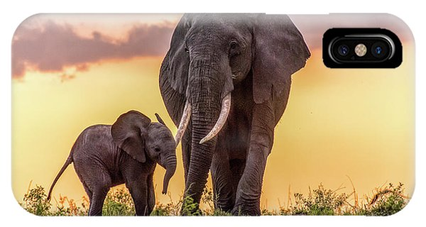 Elephants At Sunset IPhone Case