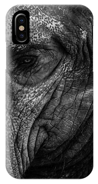 Elephants Eye IPhone Case