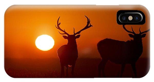 Elk And Sunrise IPhone Case