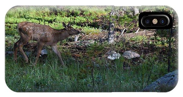 Baby Elk Rmnp Co IPhone Case
