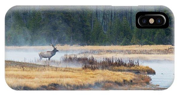 Elk Crossing IPhone Case