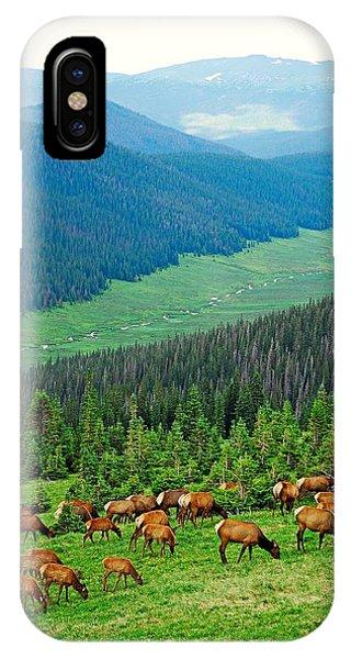 Elk Highlands IPhone Case