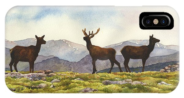 Rocky Mountain iPhone Case - Elk In The Evening by Anne Gifford