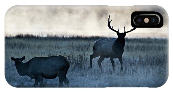 Elk In The Mist IPhone Case