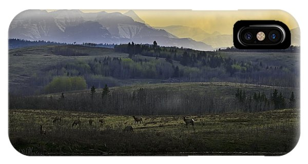 Elk On The Horizon IPhone Case