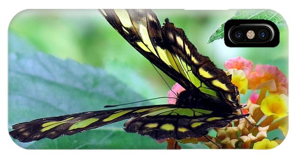 Elusive Butterfly IPhone Case