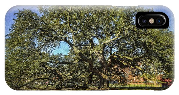 Emancipation Oak Tree IPhone Case