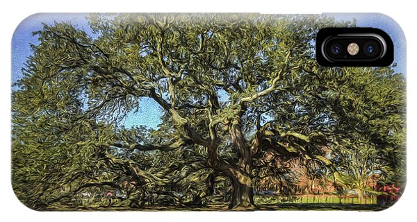 Emancipation Oak Tree IPhone Case