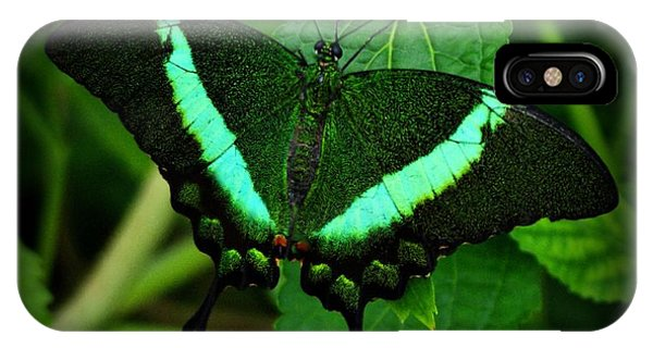 Emerald Swallowtail IPhone Case