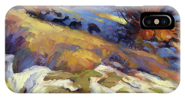 Ranch iPhone Case - Emergence by Steve Henderson