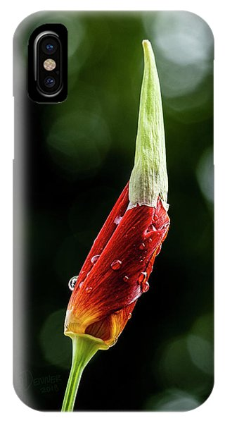 IPhone Case featuring the photograph Emerging by Fred Denner