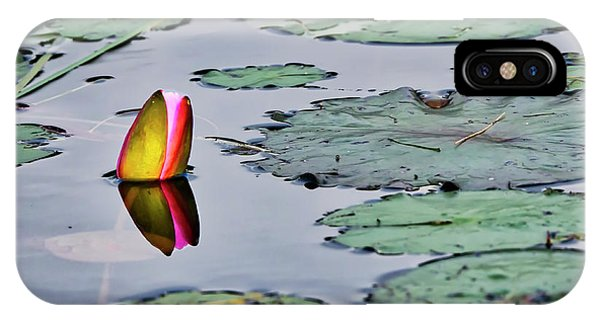 Emerging Water Lily IPhone Case
