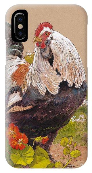 Chicken iPhone Case - Emperor Norton by Tracie Thompson